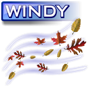 Partly Cloudy / Wind